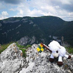 Pepino na vrcholu Ostrá (4.7.2020 13:21)
