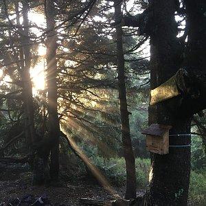 Jarek na vrcholu Malý Smrk (17.11.2019 8:03)