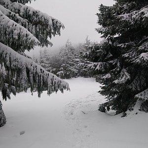 BarůůŠ Heczková na vrcholu Malý Smrk (12.2.2019 13:19)