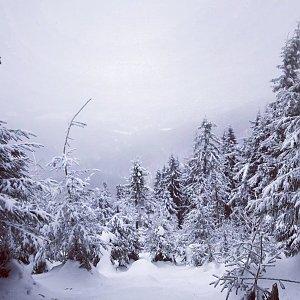 Paula Siudová na vrcholu Malý Smrk (12.2.2019 13:19)