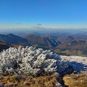 Radůza na vrcholu Stoh (16.11.2018 12:35)