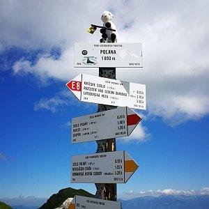 Pepino na vrcholu Poľana  (5.7.2020 11:05)