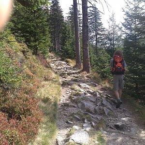 Pavla Lžičařová na vrcholu Šerák (7.9.2018 12:23)