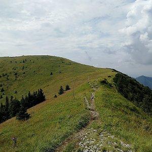 Vladimír na vrcholu Poludňový grúň (15.8.2020 12:31)
