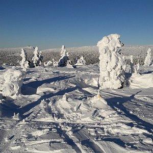 Jar Faldy na vrcholu Lysá hora (31.1.2021 15:25)