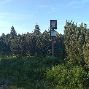 Eliška na vrcholu U Kunštátské kaple - JV vrchol (6.7.2021 19:00)