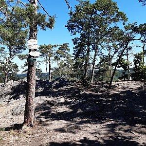 ZdenkaV na vrcholu Velká skála (6.7.2021 9:52)