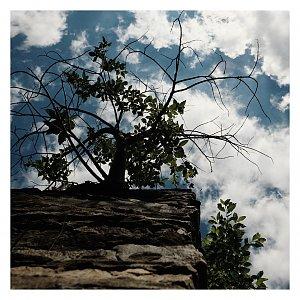 Dobros na vrcholu Jelenka (4.7.2020 10:45)