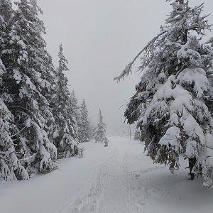 daja.cz na vrcholu Malý Jezerník (3.1.2021 15:22)