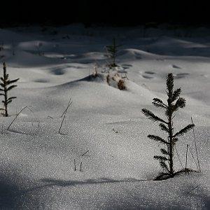 Bouřka na vrcholu Přilba - S vrchol (27.1.2020 13:24)