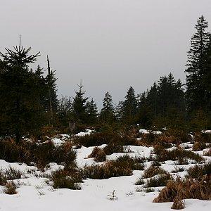 Bouřka na vrcholu Jelení vrch (27.1.2020 9:52)