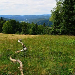 lubob na vrcholu Butorky (12.7.2015 13:00)