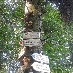 ŠenovKK na vrcholu Malá Prašivá (19.8.2018 9:41)