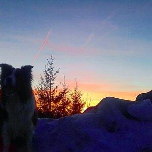 Paula Siudová na vrcholu Malý Javorový (18.2.2019 17:23)