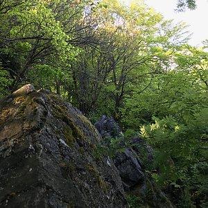 Ivetast na vrcholu Čertova skála (22.5.2021 18:30)