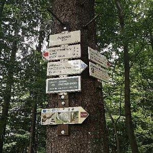 Jiří Tomaštík na vrcholu Čuboňov - S vrchol (18.7.2021 9:39)