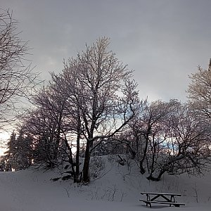 Alžběta Šlosarová na vrcholu Velký Javorník (13.1.2021 15:02)