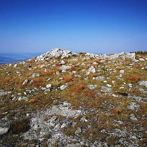 Pepino na vrcholu Pálenica (15.9.2020 14:02)