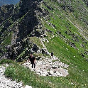 Yfča na vrcholu Tri kopy (29.6.2019 7:50)
