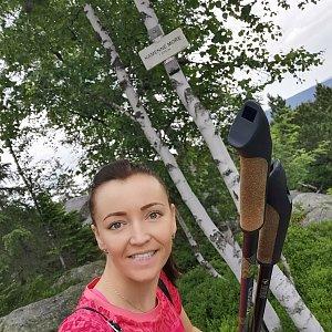 Michelle Sýkorová na vrcholu Kamenné moře (4.7.2021 22:19)