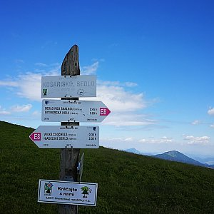 Pepino na vrcholu Košarisko (6.7.2019 11:11)