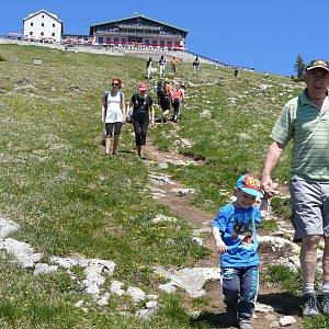 Divočák na vrcholu Schafberg (28.5.2017 11:45)